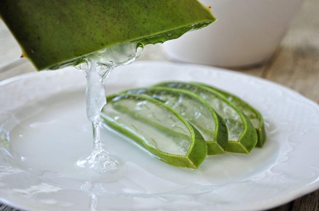 Utilizar el aloe vera en tu rutina de Skincare
